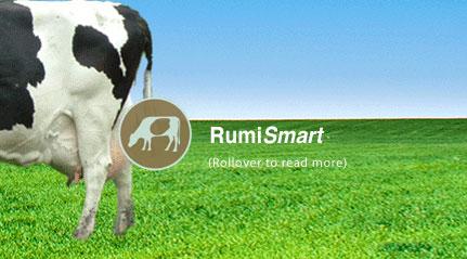 Rumi Smart