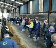 LAKELAND AGRI - TECHNICAL NEWS December, 2019