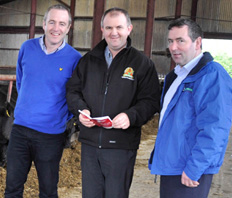 Angus Beef Producer achieves best performance in 10 years on Lakeland Dairies Gold Finisher 30