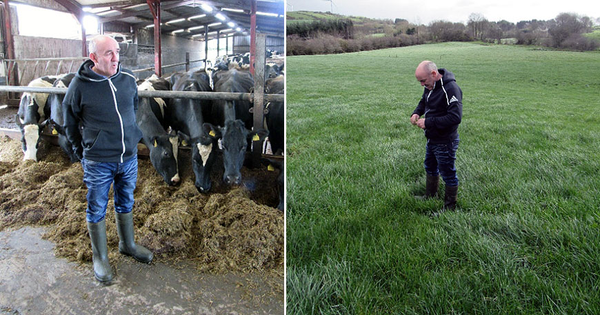 Driving herd performance with the Lakeland Agri Supercream Range