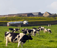 Lakeland Dairies SGM votes in favour of new electoral areas and reduced Board numbers